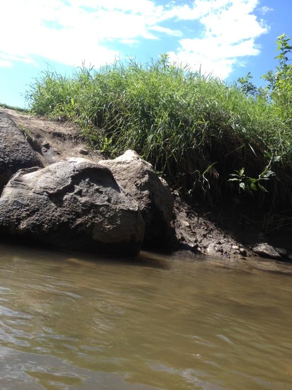 Rock on the bank of Plum Creek